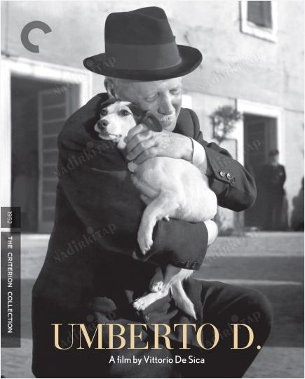 Umberto D. / Vittorio De Sica - Criterion Collection Film Afişi (45x56 cm)  | Nadir Kitap