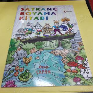 Satranç Boyama Kitabi Ozan çapan Nadir Kitap